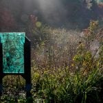 Art Glass Along the Wetlands